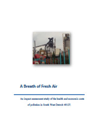 Impact Assessment of Pollution in Southwest Detroit (2014) Report